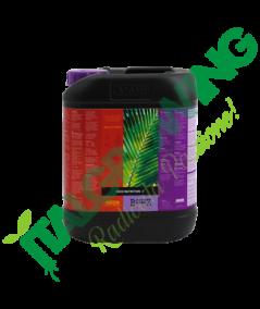 ATAMI B'Cuzz Coco Nutrition A  - 5 L
