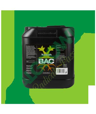 B.A.C.- Yuccah 5L B.A.C. 259,90€