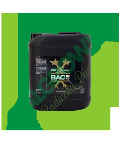 B.A.C.-Silica Power 5 L B.A.C. 165,00€