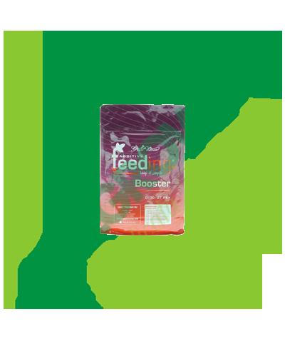 GREEN HOUSE - Powder Feeding Booster 500 GR Greenhouse Seed Bank 29,90€