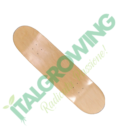 "Tavola Skateboard Artic 8""  35,90€"