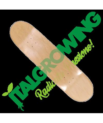 "Tavola Skateboard Artic 8.25""  37,90€"