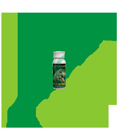 Agrobacterias - Backtomatik Rex 10 GR Agrobacterias 5,30€