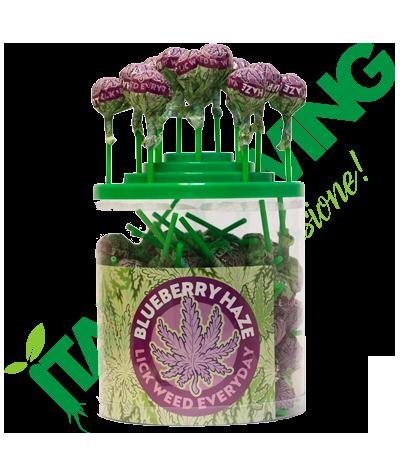 Lollipop Blueberry Haze  59,00€