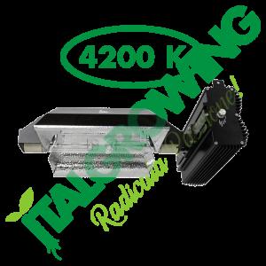 SISTEMA DI ILLUMINAZIONE SOLUX SELECTA II 630 W (4200K) Solux 499,90€