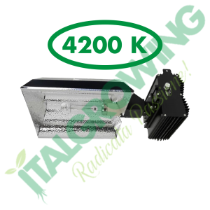SISTEMA DI ILLUMINAZIONE SOLUX SELECTA I 315 W (4200K) Solux 339,90€