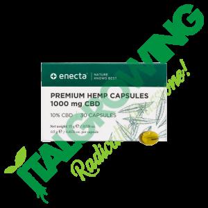 ENECTA CBD in Capsule 10% - 1000 mg ENECTA 51,90€
