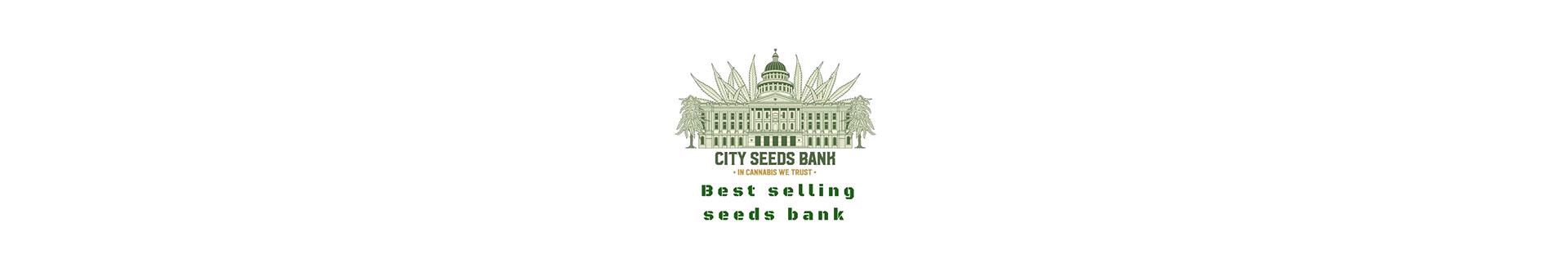 City Seeds Bank